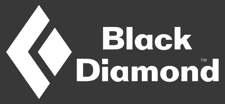 BD Logo-Grey