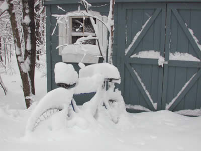 http://downwindsports.com/mainSite/wp-content/uploads/2010/12/bike-snow-shed.jpg