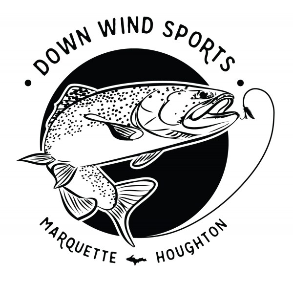 down wind sports fly logo