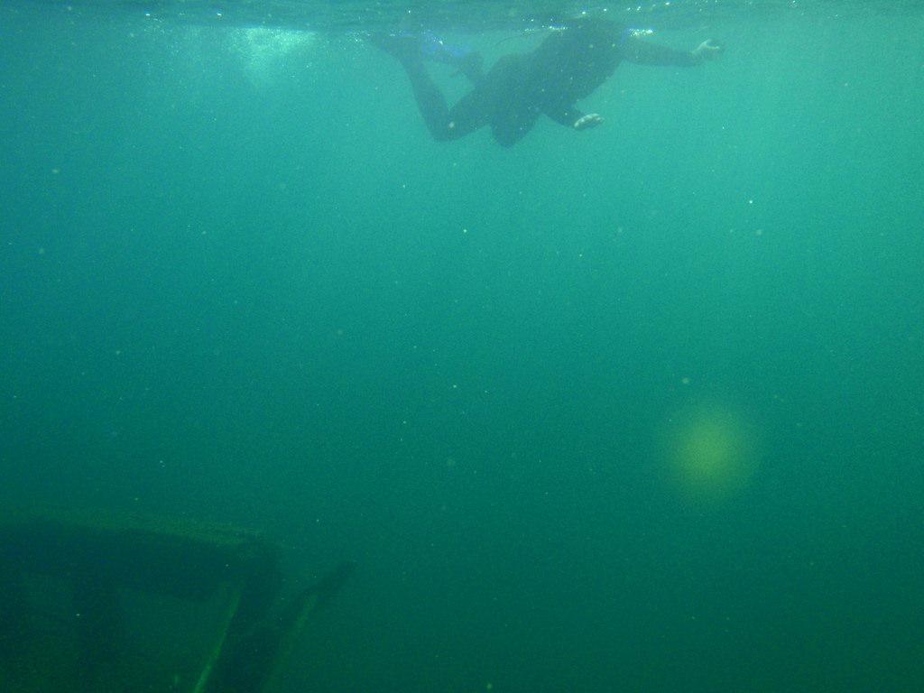 Wreck Of The Bermuda